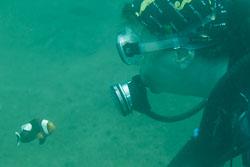 BD-180211-Anilao-9543-Homo-sapiens.-Linnaeus.-1758---Diver.jpg