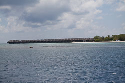 BD-150423-Maldives-7894-Travel---Diving.jpg
