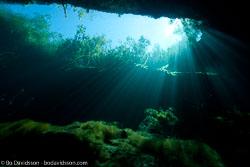 BD-101210-Cenotes-2974-Cavern.jpg