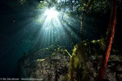BD-101210-Cenotes-3003-Cavern.jpg